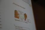 13-Phonetik Seminar 2012